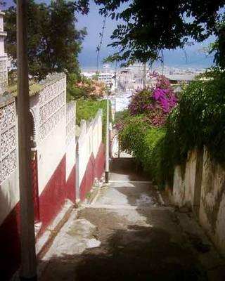 Alger-kouba