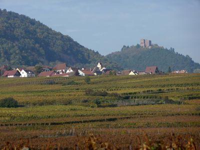 27 10 2011 route du vin 001