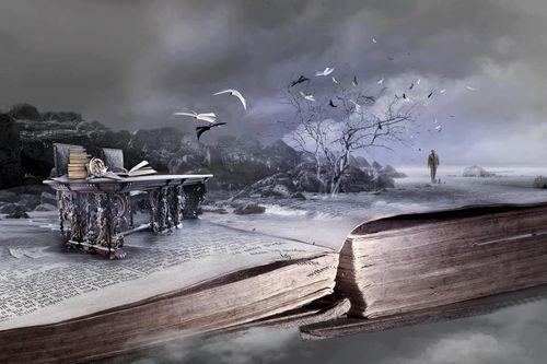 Improbable librairie32340_405578849514354_225936762_n