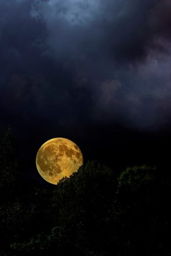 Pleine lune999000_371074976348463_948577453_n