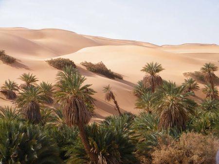 Désert dune