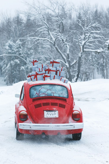 Voiture79ideas_christmas_time