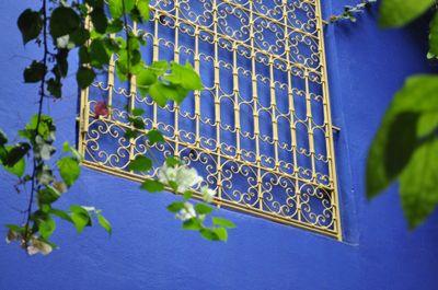 Jardin-majorelle-marrakech-10
